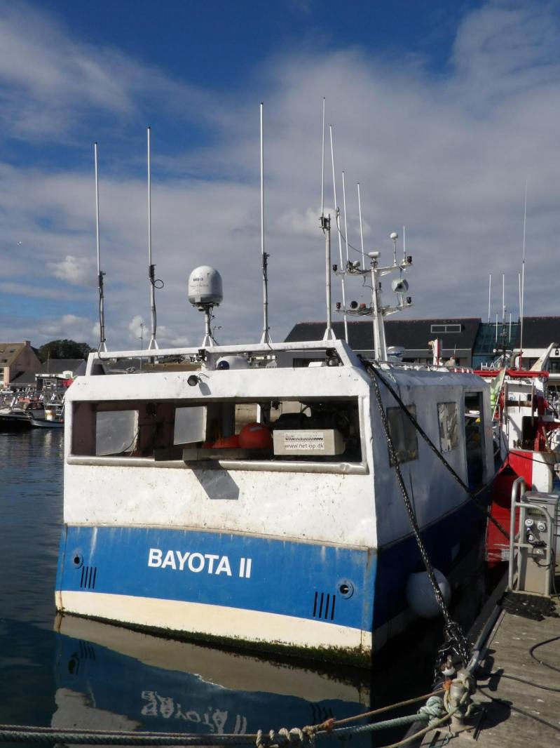201015 bayota ii cc815511 c 2