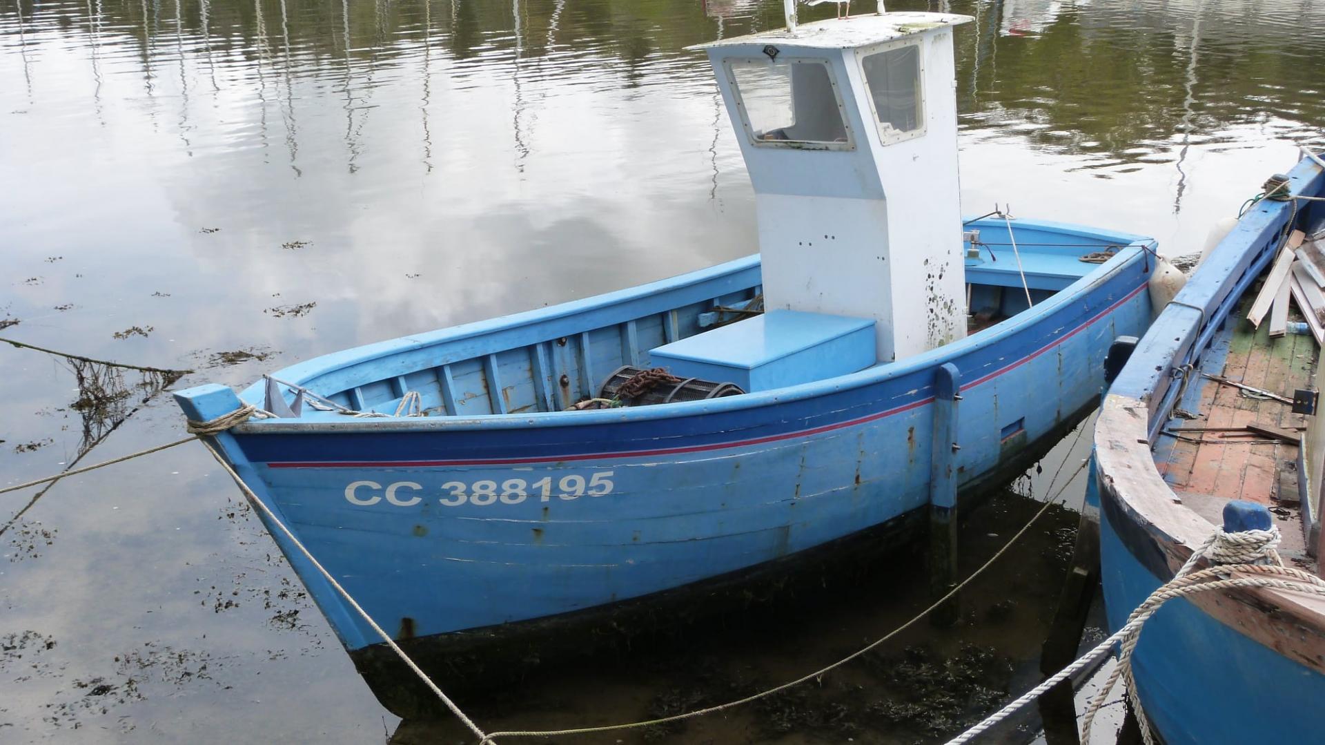 Cc388195 fabrice roperch