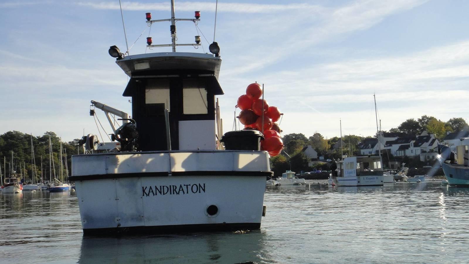 Kandiraton cc481728
