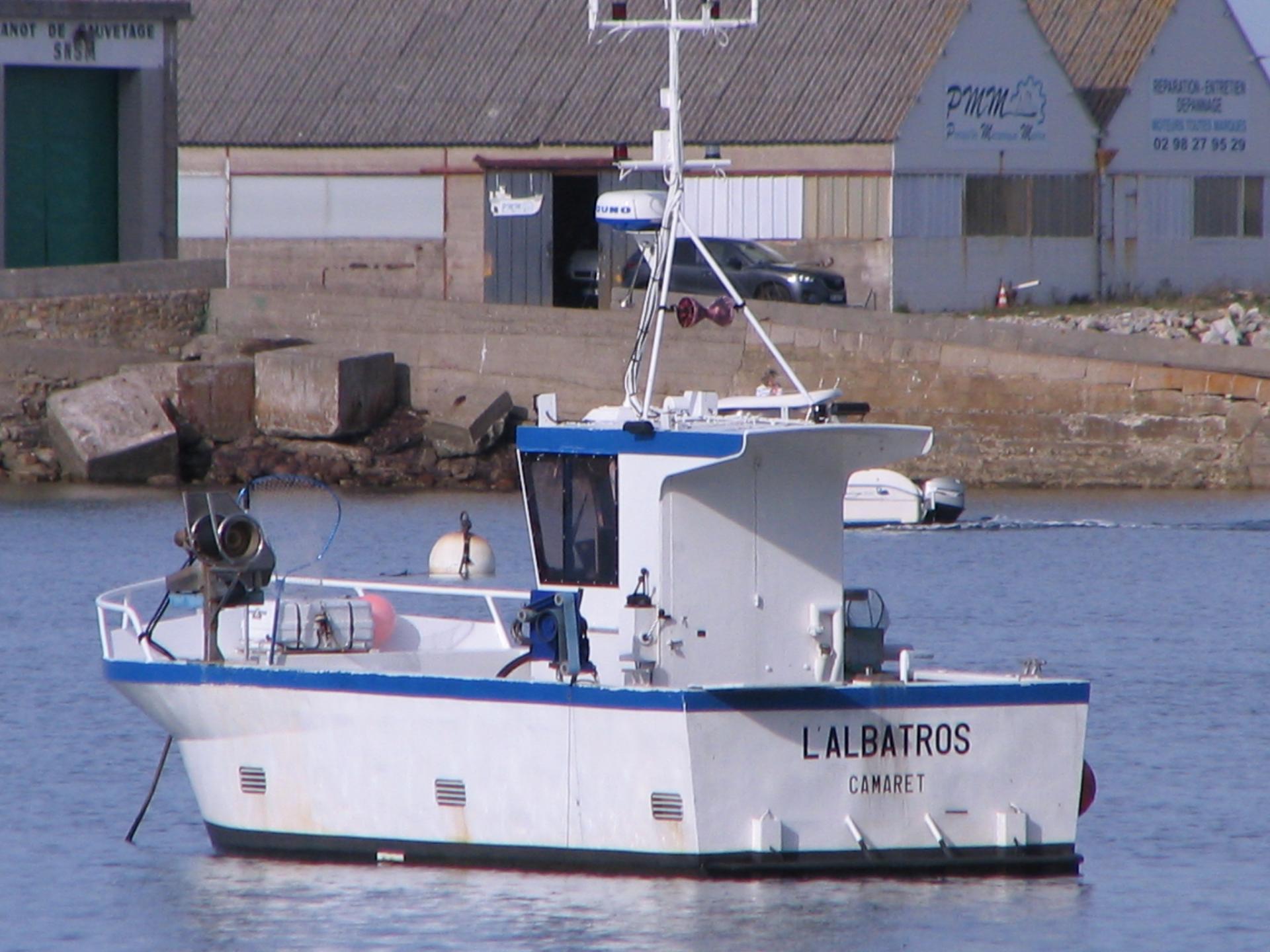 L albatros cm 804689