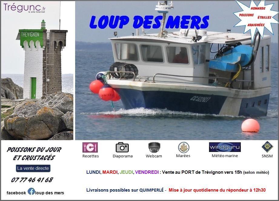 Loup des mers cc522627 vente directe